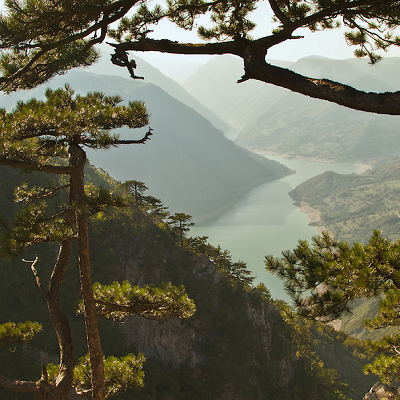 The Drina River flows down a gorgeous canyon, as seen in this Tara National Park viewpoint, Serbia. (Irene Becker)