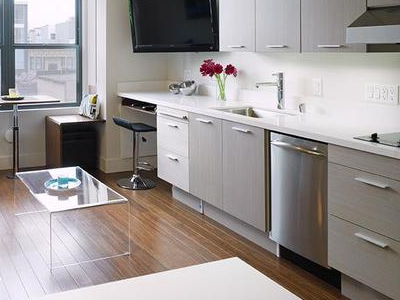 Sleek galley in a studio. Appliances include a standalone fridge-freezer to the right (unseen), range top and dishwasher. It has limited counter space and no oven. (Smart Space)