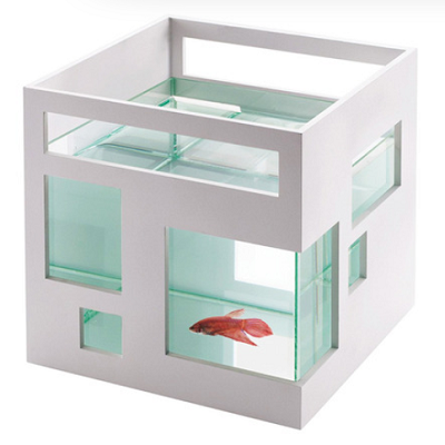 FISH HOUSE: If you crave a Reitveld inspired abode, then one tiny fish tank might fit the bill. The De Stilj home is now available for a gold fish or two, in an eight-inch model. ($34.99, De Stilj Fish Apartment, DotandBo)